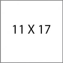 Color Copies 11X17