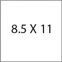 8.5X11 Die cut flyers