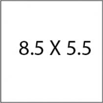 Flyers 8.5X5.5