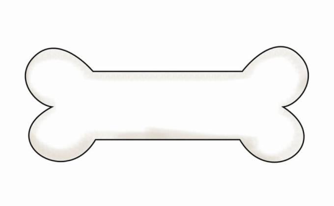 Bone shaped business cards